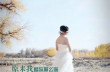 #旅行拍照技术流 我的牵挂在那片胡杨林中