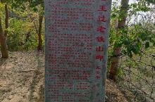 老铁山黄渤海分界线