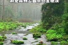 张家界三天游玩攻略,赴一场山水之约~