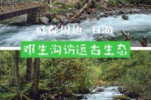 成都周边一日游-邓生沟访远古生态