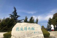探寻唐代文化历史渊源