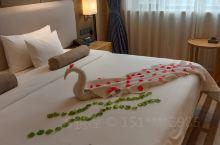 精湛的毛巾艺术竟然发挥的淋漓尽致!环境优雅,如梦如幻!