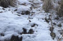 初雪后上山