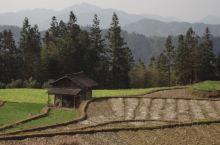 图1-7: 贵州省三都水族自治县都江镇怎雷村,只是贵州——这个没有平原的省份的一个普通村寨。在田埂上