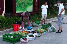 英山桃花溪避暑度假小镇的早市不算热闹,但生活的基本供应还是齐全的。根据昨天公布的全民核酸检测的人数是