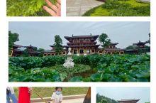 中国及世界最高阿弥陀佛铜像 详细地址:在庐山附近的小山上,依山而建,气派,山顶金光闪耀,大佛高48米