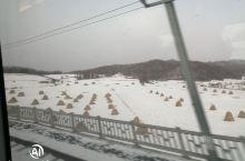 茫茫大东北的雪,也掩盖不了大兴机场的美