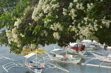 巴里卡萨‖不仅是潜水圣地海岛风光也无限好