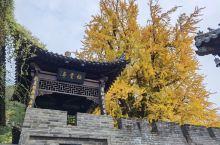 带着狗子旅游•古观音禅寺