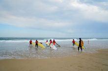 黄金海岸是冲浪者天堂。南太平洋的风浪,忽隐忽现的阳光,微凉细腻的沙滩,闲庭信步的海鸥,五点下班的救生