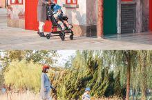 天津遛娃|这条小溪承载了麦芽一整天的快乐