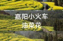 """""""最后的蒸汽小火车""""-嘉阳小火车"""