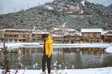 太惊喜!在雪花飞舞的泸沽湖与海鸥同框