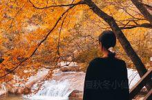 成都秋日限定 误入宫崎骏的童话世界