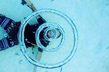 波拉波拉(BoraBora)海底漫游记