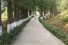这个季节的常山美极了,美得令人陶醉! 诸城·潍坊