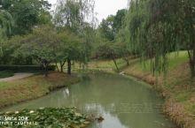 京山公园一瞥
