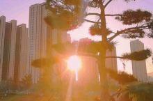 夕阳西下,在摄乐公园