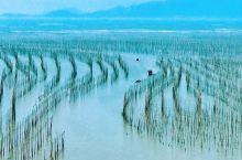 霞浦迷人滩涂景色