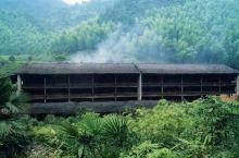 桐木关,青楼,在我的心里一直是神秘又神圣之地,原生态的环境,传统的气息,干净纯粹,特别喜欢那茶里独特