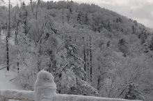 有那么一处美景是不期而遇,像梦中的世界,冰凌和雪往前踏一脚,就混为了一体,感叹大自然的鬼斧神工, 雪