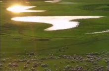 这个夏天,让我们相约新疆,相约醉美草原!