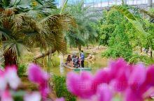 【划竹筏、闻花香,在这里,来一场奇妙梦幻之旅吧~】  园子总面积为300亩。是集热带植物、花卉观赏、