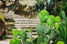 打卡霞浦东壁村的拾间海民宿,一晚有温度的夜宿。拾间海,一家轻奢的现代风格海景房,在悬崖峭壁上建造起来
