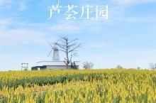 广东 广州自驾仅2h私藏千亩芦荟花海