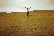 我的呼伦贝尔大草原