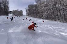这里有场雪,等你滑一下
