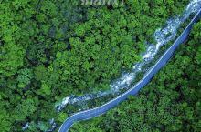 西安近郊自驾避峰踏青|红河谷森林公园攻略