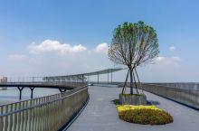 元荡慢行桥总长585.7米,呈弧形设计,宛若一条随风飘动的彩缎,横跨沪苏两地,静卧于元荡湖上。从青浦