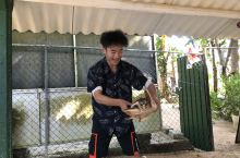斯里兰卡海龟保护幼儿园义工旅行活动
