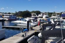 悉尼帆船俱乐部