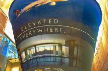 休斯顿的乔治·布什机场。什么时候都不会感到枯燥。巨大的咖啡杯悬挂在空中,擦鞋的高高一排,电脑、ip随