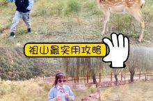 北京周边小奈良| 祖山·天女小镇实用攻略