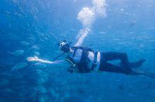 诗巴丹潜水VLOG~世界五大峭壁潜水之首
