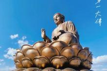 敦化|世界第一高青铜坐佛你知道多高吗