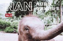 野象谷|听完这个象家族的故事,被暖哭了!