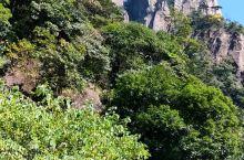 三清山,风景很美!