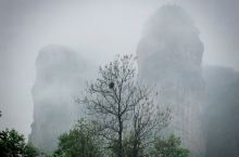雨中看龙虎山