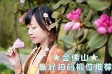 重庆这片杜鹃花海将盛开,这份拍照秘籍收好