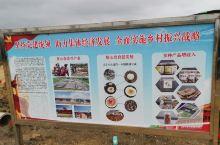 农民多种经营,村村种植,发展乡村经济,打造富裕乡村