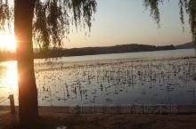 西湖和三潭印月景色