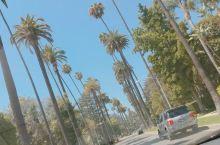 洛杉矶的阳光
