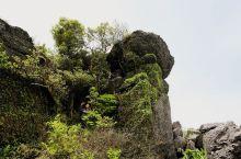 木公寨,位于信丰县正平镇中坝。