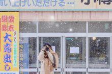 北海道旅行 | 冬天一定要去一次北海道