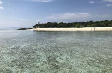 世界级潜水圣地  马来西亚仙本那