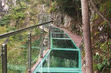 周末休息,爬爬山,走走桥,也是不错的。